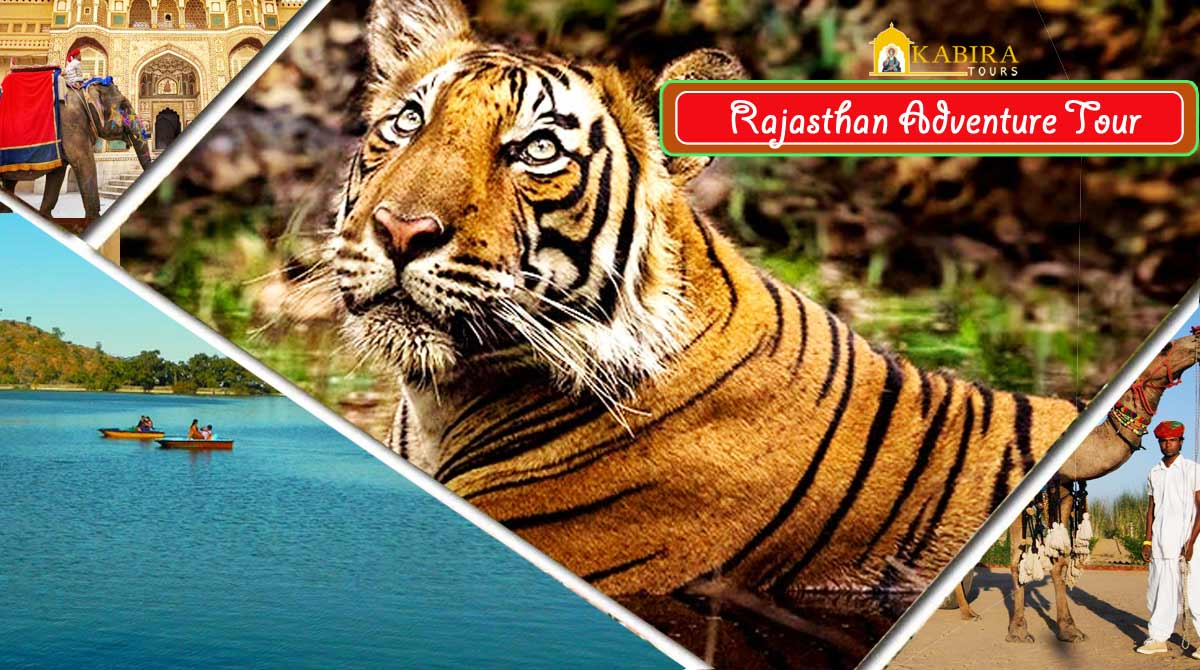Rajasthan Adventure & Jungle Safari Tours